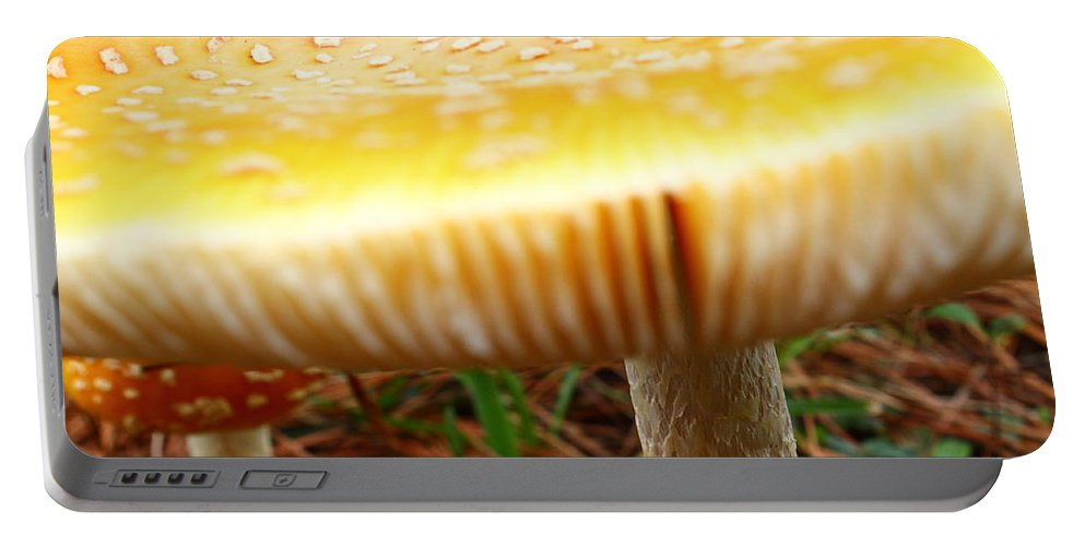 Yellow Mushrooms Portable Battery Charger featuring the photograph Shiny Top by Catie Canetti