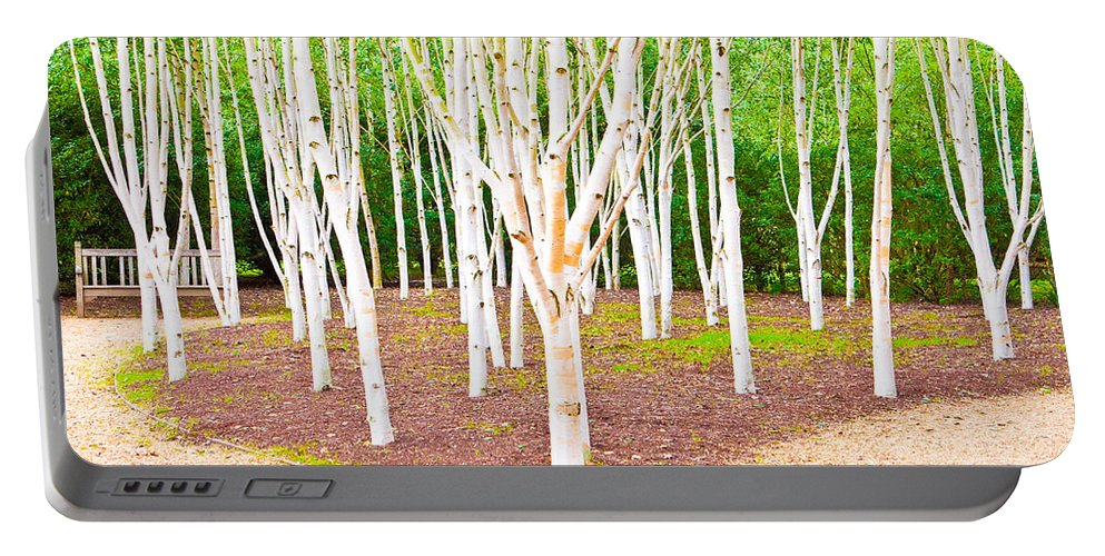 Beatiful Portable Battery Charger featuring the photograph Silver Birch Trees by Tom Gowanlock