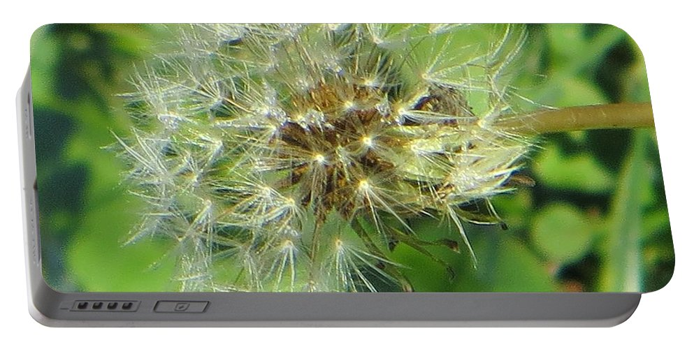Flying Dandelions Portable Battery Charger featuring the photograph Silver Feathers by Sonali Gangane