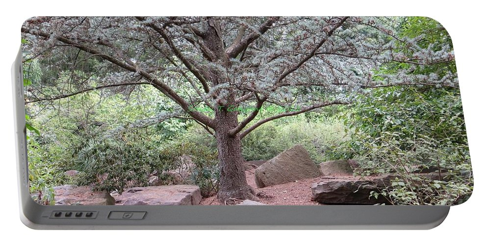 Thought Tree Portable Battery Charger featuring the photograph Silver On Trunk by Sonali Gangane
