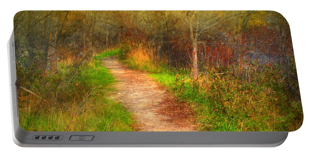 Path Portable Battery Charger featuring the photograph Simple Pathways by Tara Turner