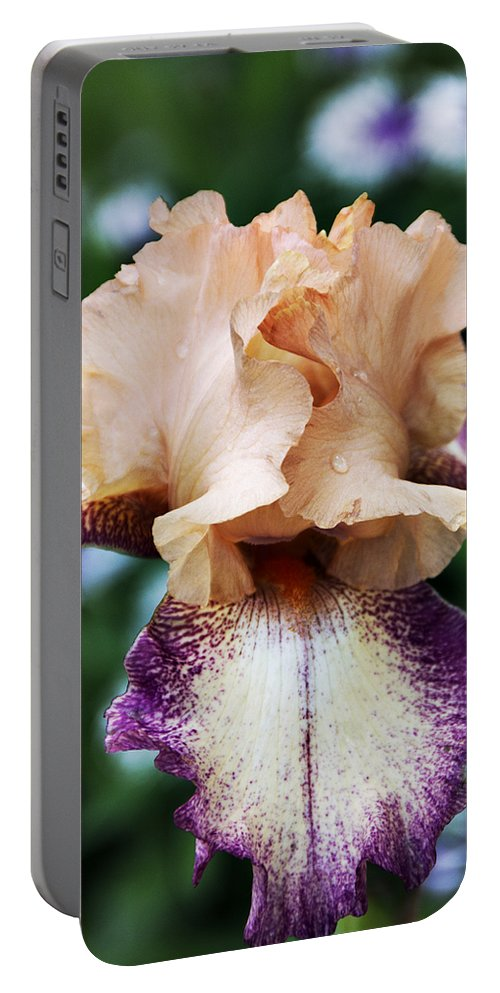 Iris Portable Battery Charger featuring the photograph Singing In The Rain 3 by Angelina Vick