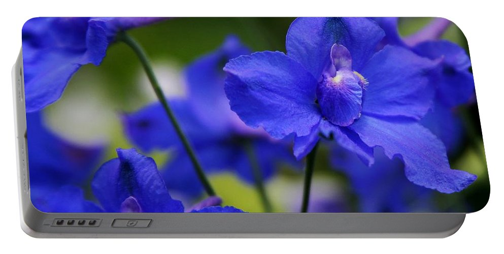 Blue Portable Battery Charger featuring the photograph Singing The Blues by Sabrina L Ryan