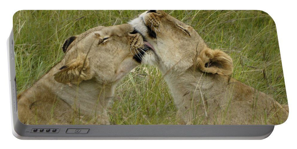 Africa Portable Battery Charger featuring the photograph Sisterly Love by Michele Burgess