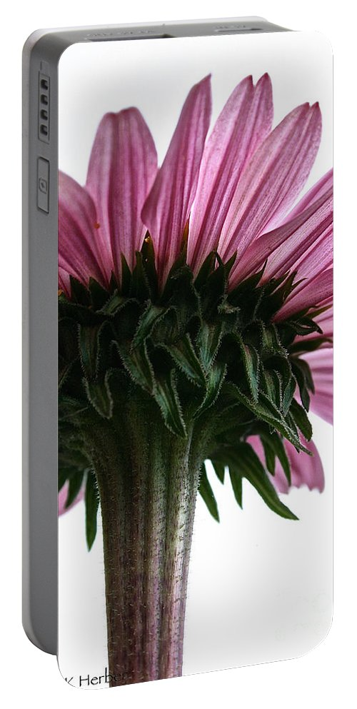Minnesota Portable Battery Charger featuring the photograph Sky High by Susan Herber