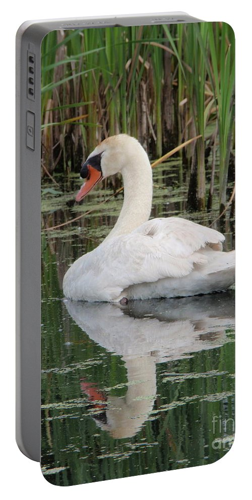 Swan Portable Battery Charger featuring the photograph Sleeping Beauty by Aimee Mouw