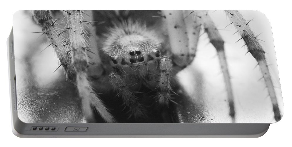 Alberta Portable Battery Charger featuring the photograph Small Alberta Spider by Darcy Michaelchuk