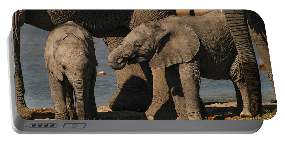 Focussed Portable Battery Charger featuring the photograph Small And Big by Alistair Lyne