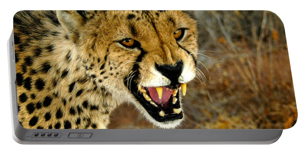 Acinonyx Jubatus Portable Battery Charger featuring the photograph Snarl by Alistair Lyne