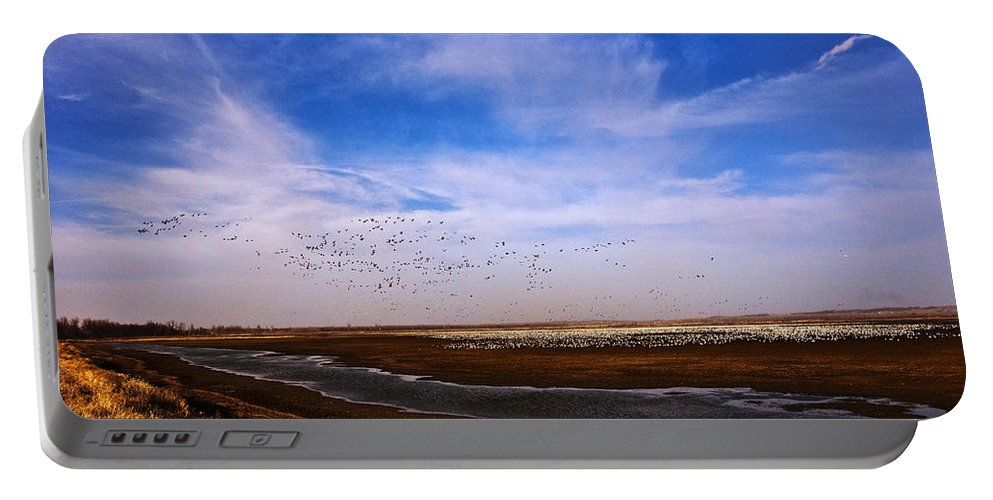 Squaw Creek National Wildlife Refuge Portable Battery Charger featuring the photograph Snow Geese At Rest by Edward Peterson
