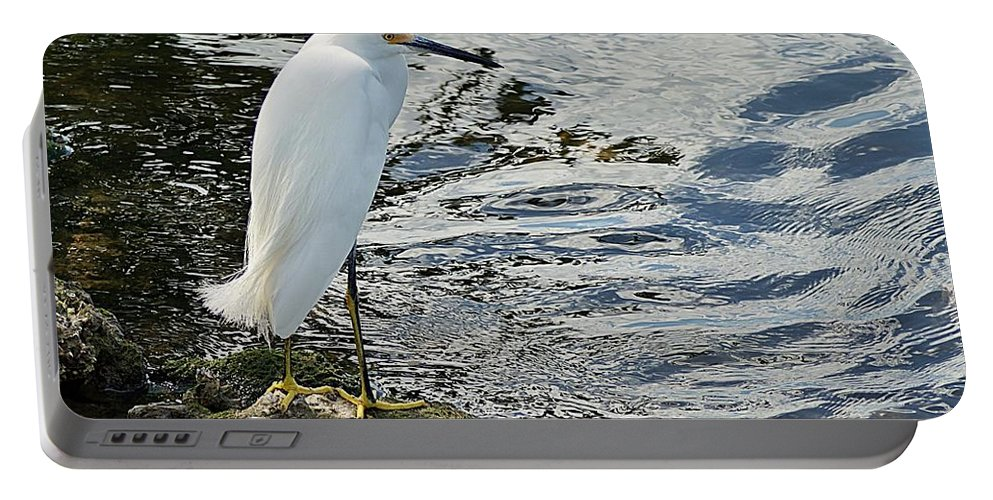 Snowy Portable Battery Charger featuring the photograph Snowy Egret 2 by Joe Faherty
