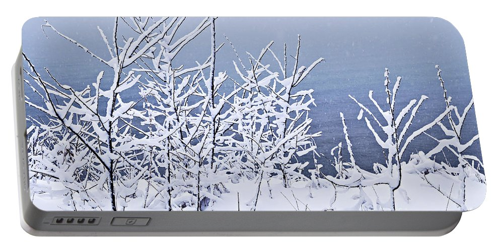 Winter Portable Battery Charger featuring the photograph Snowy Trees by Elena Elisseeva