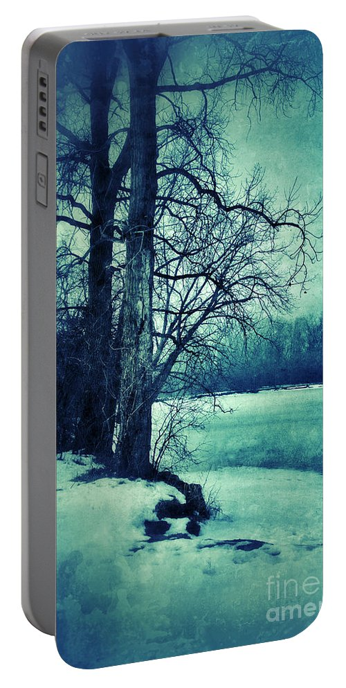 Woods Portable Battery Charger featuring the photograph Snowy Woods By A Lake by Jill Battaglia