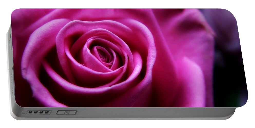 Rose Portable Battery Charger featuring the photograph Soft Pink Rose by Vicki Field