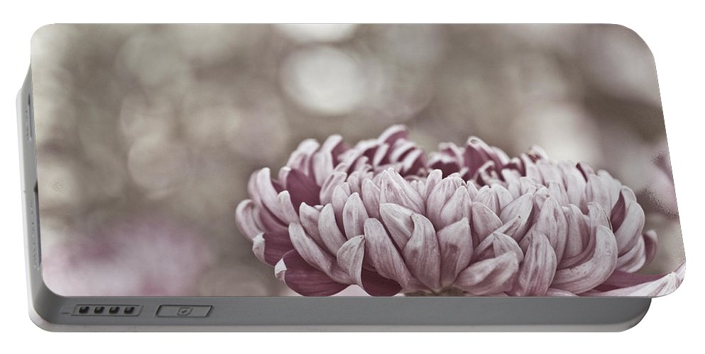 Flower Portable Battery Charger featuring the photograph Sometimes I Wonder by Trish Tritz