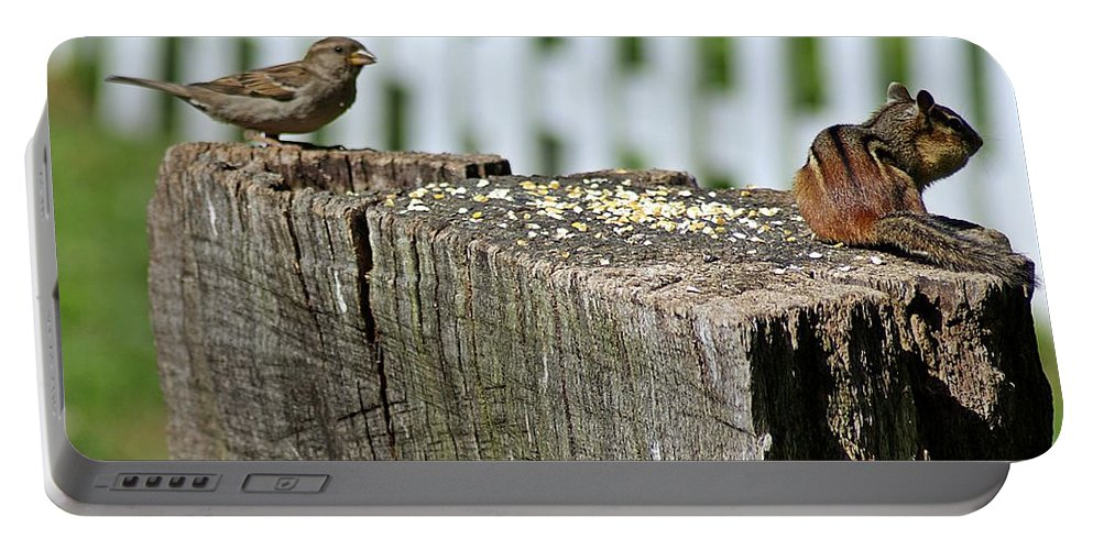 Sparrow Portable Battery Charger featuring the photograph Sparrow And Chipmunk Coexist by Joe Faherty