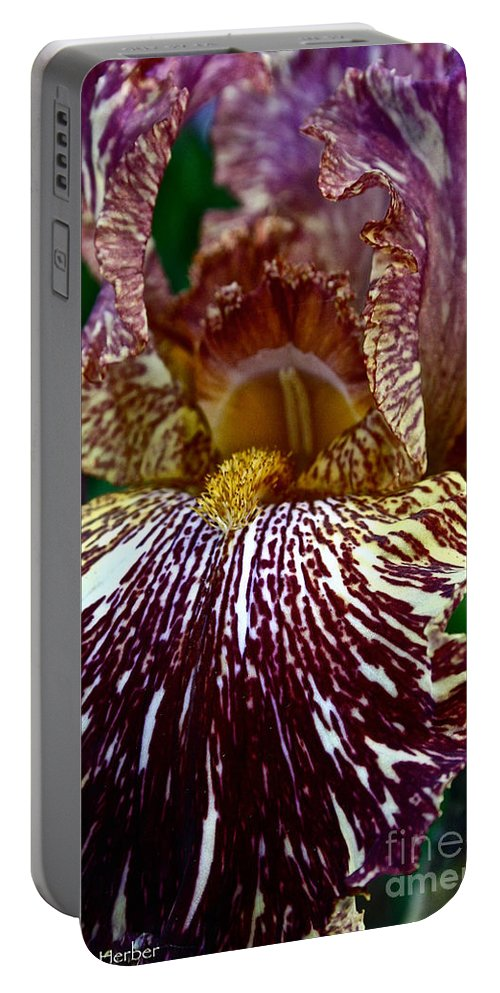 Plant Portable Battery Charger featuring the photograph Splashed Iris by Susan Herber