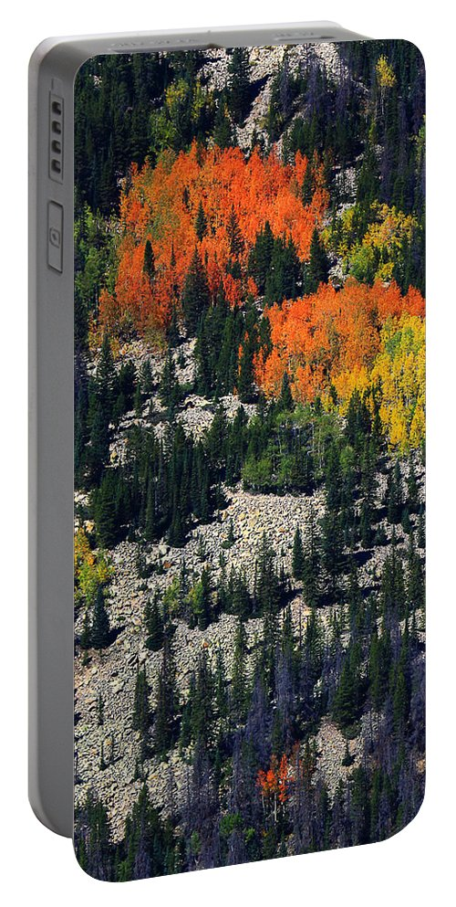 Autumn Colors Photograph Portable Battery Charger featuring the photograph Splashes Of Fall by Jim Garrison