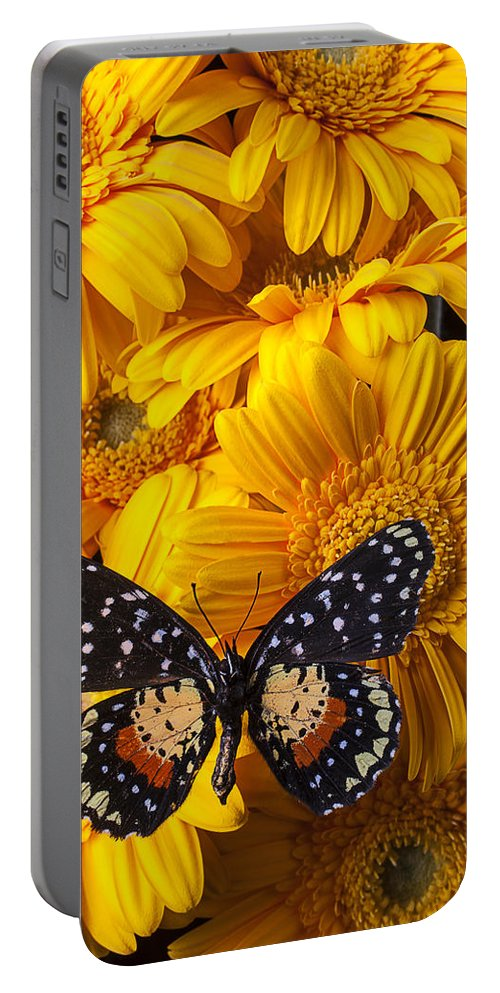 Spotted Gerbera Portable Battery Charger featuring the photograph Spotted Butterfly On Yellow Mums by Garry Gay