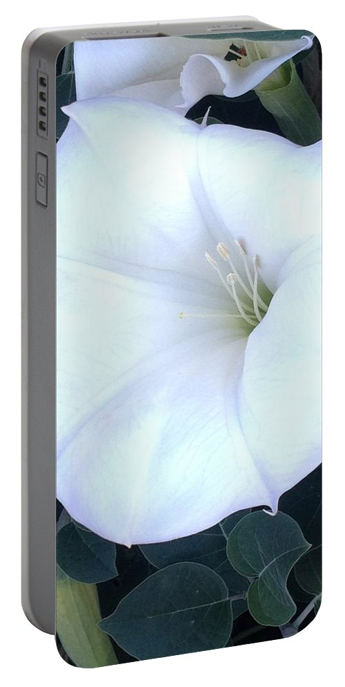 Flower Portable Battery Charger featuring the photograph Spuds by Joseph Yarbrough