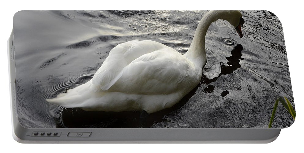 Swan Portable Battery Charger featuring the photograph Still Waters Run Deep by Bob Christopher