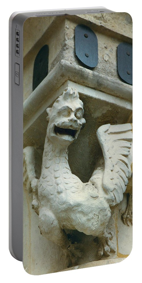 Stone Portable Battery Charger featuring the photograph Stone Beastie by Diana Haronis