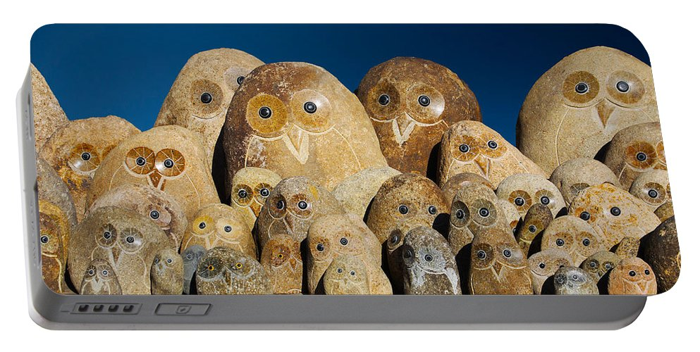 Owls Portable Battery Charger featuring the photograph Stone Owls by Diana Haronis