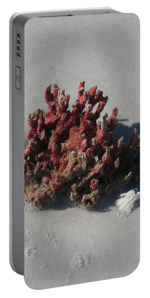 Beach Portable Battery Charger featuring the photograph Stranded Coral by Christiane Schulze Art And Photography