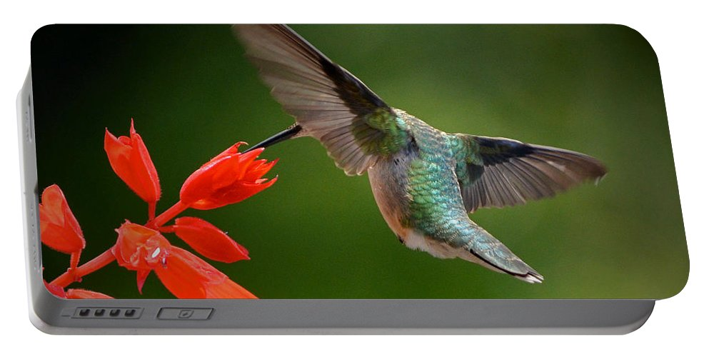 Color Photography Portable Battery Charger featuring the photograph Style And Grace by Sue Stefanowicz