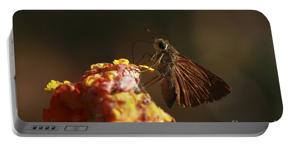 Butterfly Portable Battery Charger featuring the photograph Suck It Up by Kim Henderson