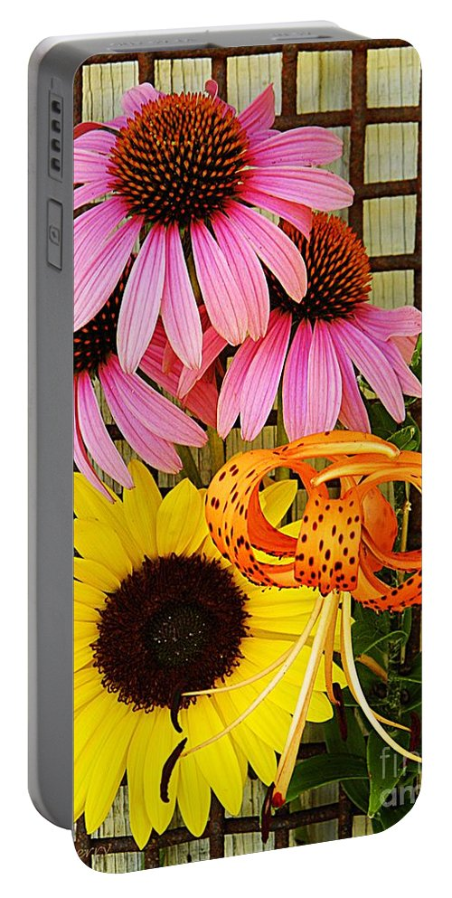 Nature Portable Battery Charger featuring the photograph Summer Trio by Chris Berry