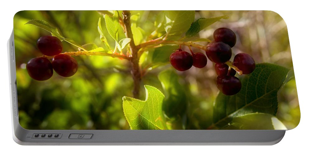 Berries Portable Battery Charger featuring the photograph Summer's Bounty by Ellen Heaverlo
