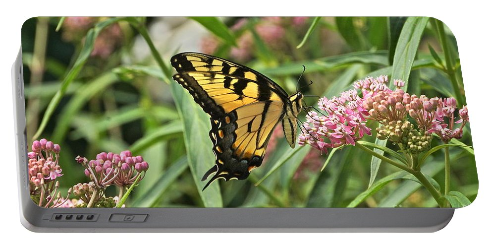Eastern Tiger Swallowtail Portable Battery Charger featuring the photograph Summer's Flying Tiger by Byron Varvarigos