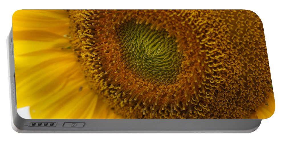 Sunflower Portable Battery Charger featuring the photograph Sunflower Closeup by Alan Hutchins