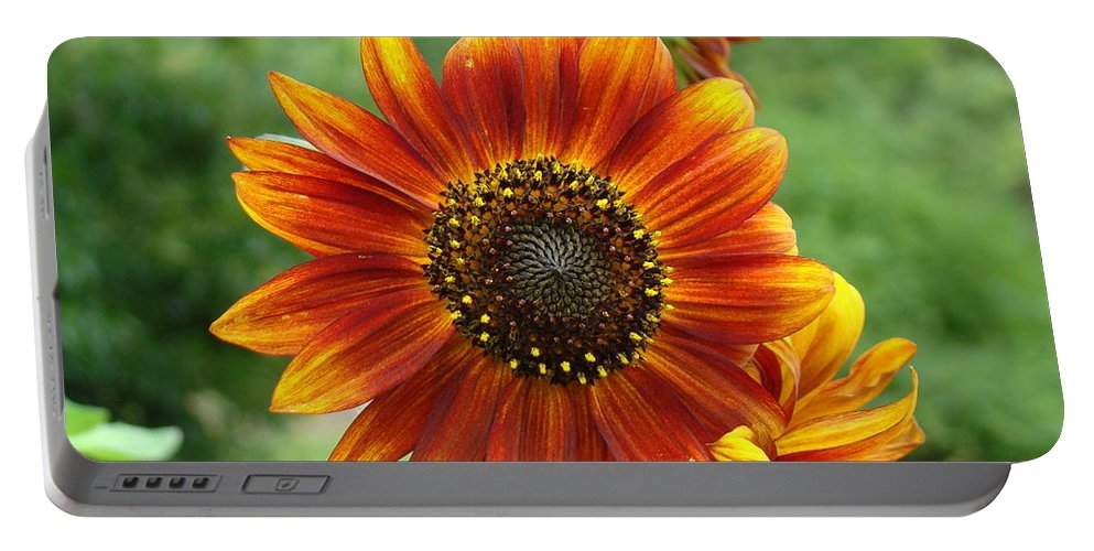 Red Sunflower Portable Battery Charger featuring the photograph Sunflower by Lisa Rose Musselwhite