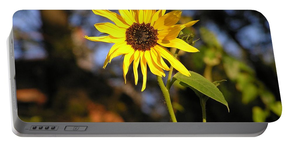 Sunflower Portable Battery Charger featuring the photograph Sunflower by Stefa Charczenko