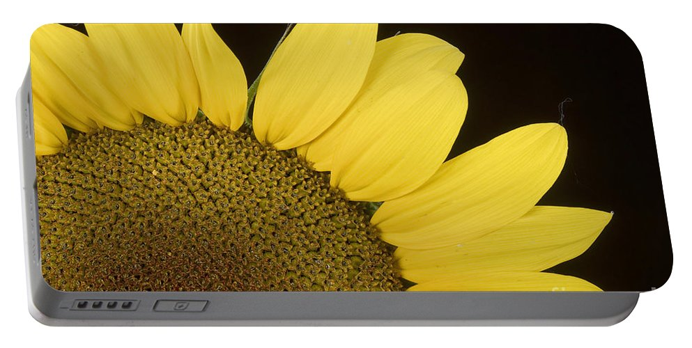Sunflowers Portable Battery Charger featuring the photograph Sunflower Sunshine by James BO Insogna