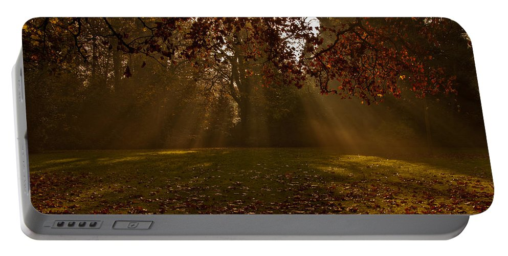 Sunlight Portable Battery Charger featuring the photograph Sunlight And Leaves by Dawn OConnor