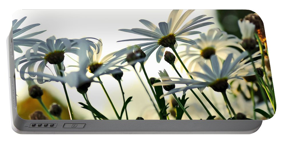 Photography Portable Battery Charger featuring the photograph Sunlight Behind The Daisies by Kaye Menner