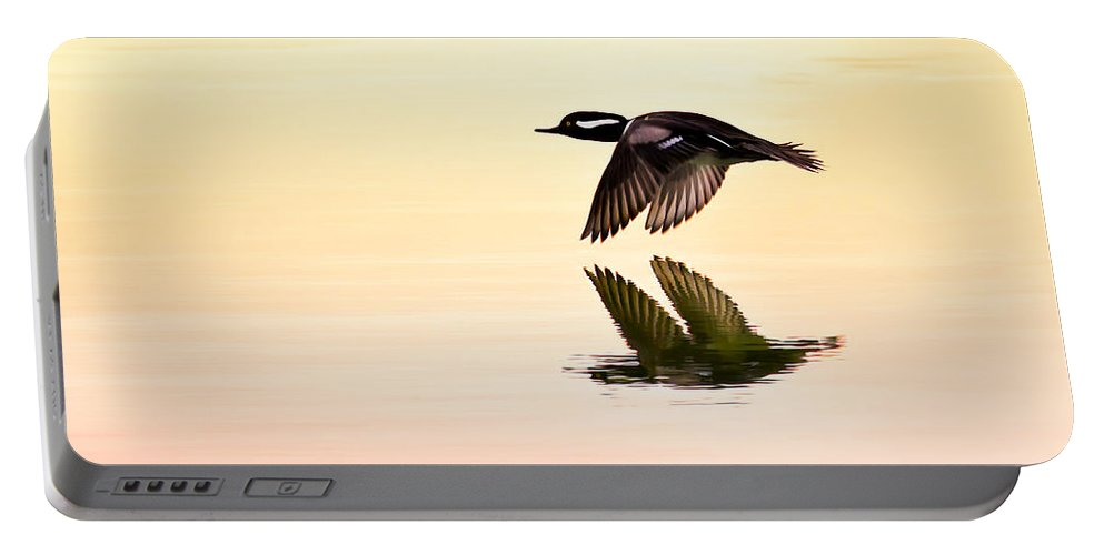 Hooded Merganser Portable Battery Charger featuring the photograph Sunrise Flight by Janet Fikar