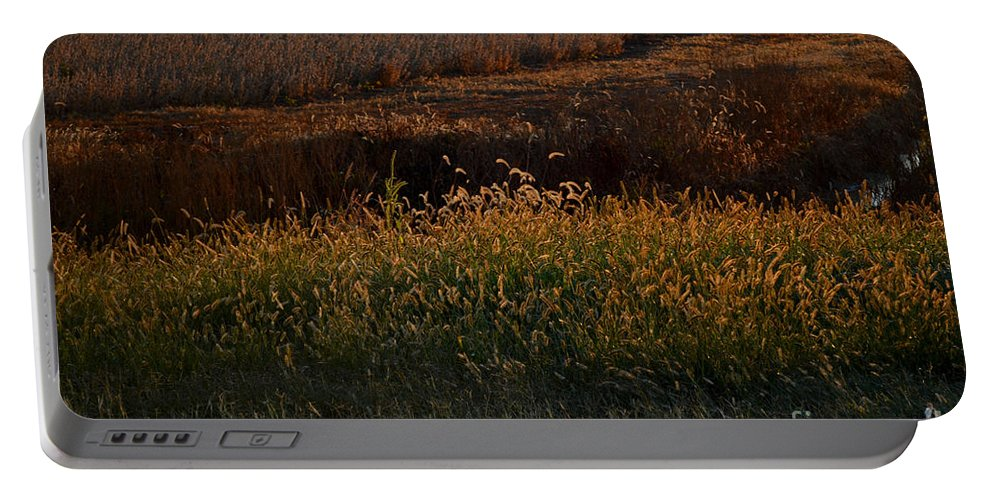Sun Portable Battery Charger featuring the photograph Sunrise On Wild Grasses II by Debbie Portwood