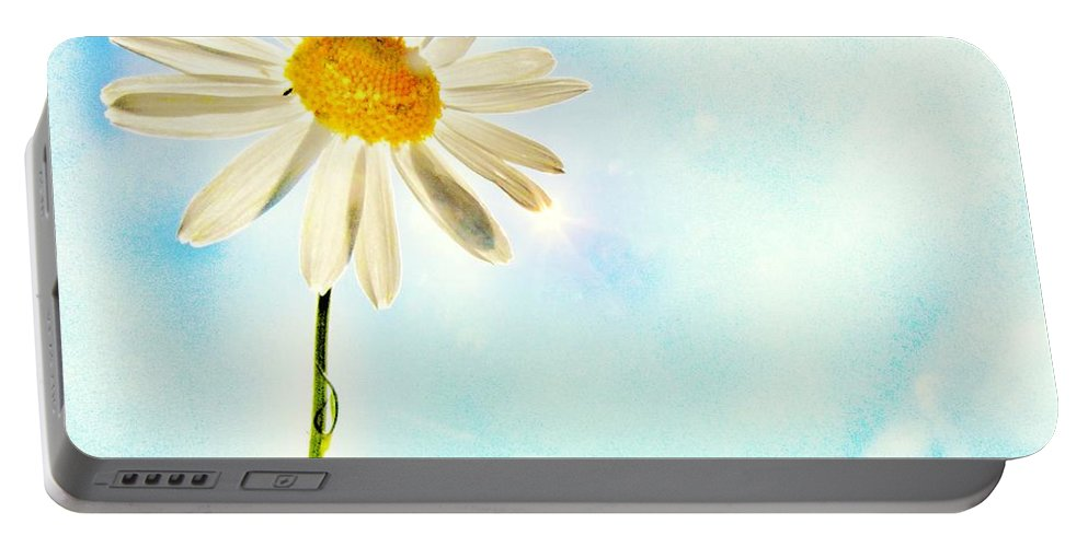 Daisy Portable Battery Charger featuring the photograph Sunshine by Marianna Mills