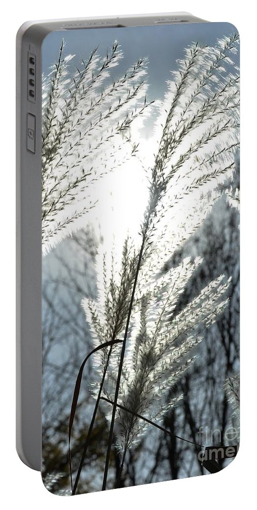 Autumn Portable Battery Charger featuring the photograph Sunshine Ornamental by Cheryl Baxter