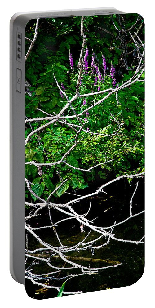Branches Portable Battery Charger featuring the photograph Support by Burney Lieberman