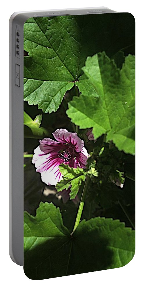 Flowers Portable Battery Charger featuring the photograph Survivor by Joseph Yarbrough