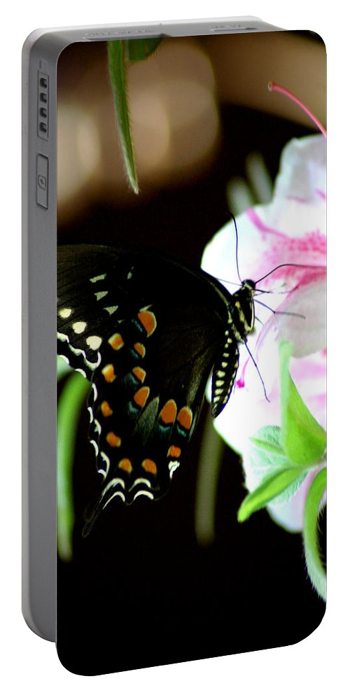 Swallowtail Portable Battery Charger featuring the photograph Swallowtail by David Weeks