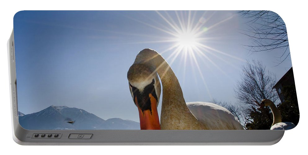 Swan Portable Battery Charger featuring the photograph Swan Saying Hello by Mats Silvan