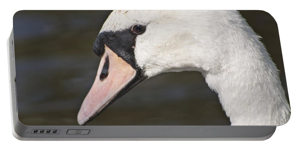 Swan Portable Battery Charger featuring the photograph Swan's Head by Steve Purnell