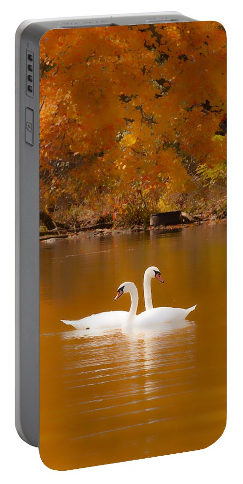 Swans On Portable Battery Charger featuring the photograph Swans Soft And Smooth by Randall Branham
