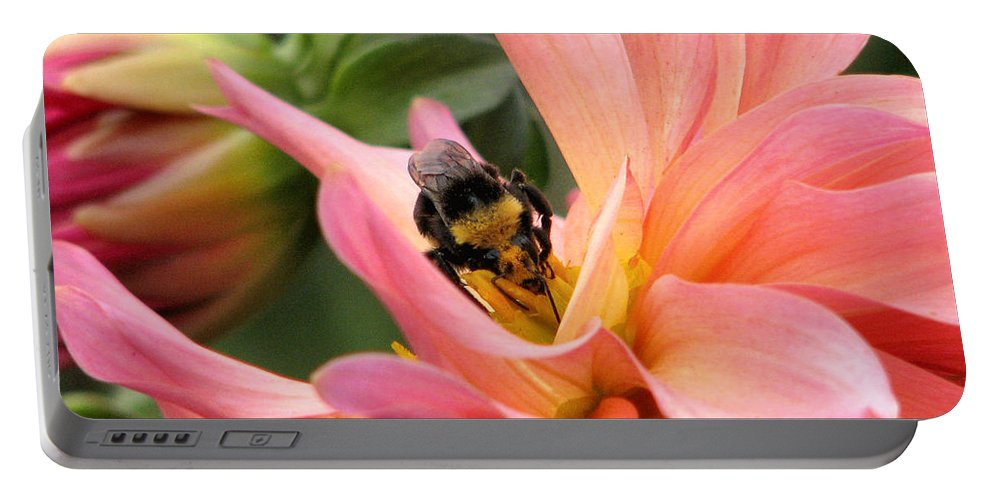 Flower Portable Battery Charger featuring the photograph Sweet Nectar by Rory Sagner